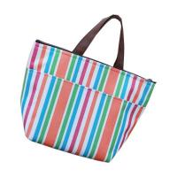 Portable Polyester insulated Cooler Bags For Women , Carry On Cooler Bag