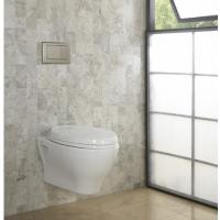 For modern bathrooms Timeless style Concealed cistern SoftMood Wall Hung WC With Seat And Cover and Wall Hung Bidet Manufactures
