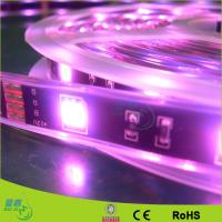5050 Waterproof Flexible Led Light Strip Manufactures