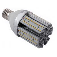 24W DC26V E40 / E27 1500 - 1800LM LED Outdoor Street Induction Lighting Fixtures (SMD) Manufactures
