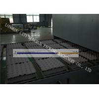 High Output Egg Tray Machinery , Egg Crate Making Machine PLC Control Manufactures