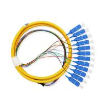 12 Core Fiber Optic Patch Cord Pigtail Sc Connector For Telecommunication Equipment Manufactures