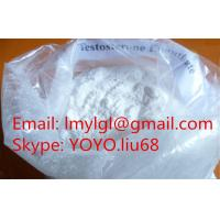 China Powerful Hormone Raw Testosterone Bulking Cycle Steroids Powder Enanthate Bodybuilding CAS 315-37-7 on sale