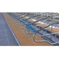 Double Position Locking Feed Barriers Cattle Feeding Equipment With 6pcs Shackle