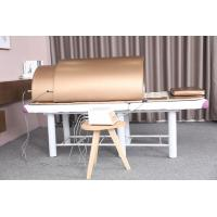 Ovary Care Infrared Sauna Bed / Far Infrared Dome With 5 - 60 Minutes Time Setting Manufactures