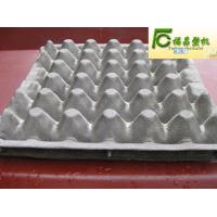 egg tray/box/carton mould/mold/dies Manufactures