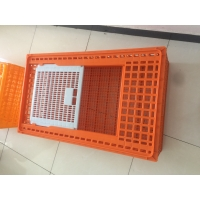 Commercial Farm Polypropylene Chicken Transport Cages Manufactures