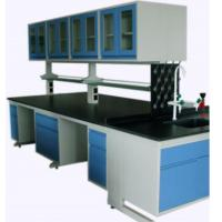 Full Steel Laboratory Benches And Cabinets , Lab Desk Furniture With Adjustable Shelf Manufactures