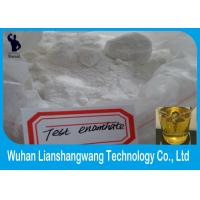 China CAS 315-37-7 Fitness Steroids Injectable Testosterone Enanthate 250 Pharma Raw Materials on sale