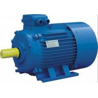 Buy cheap 0.75HP Y2 Three-Phase Asynchronous Induction Motors from wholesalers