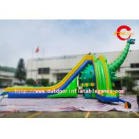 China Funny Adult Size Giant Inflatable Water Slide For Backyard , SGS on sale