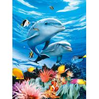 BSCI Lenticular 3D Pictures For Hotel Decoration / 3D Animals Photos Manufactures