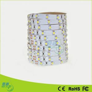 Rgb 3528 / 5050 / 2835 Led Rope Lights , 60 Leds/M 30 Leds/M Manufactures