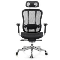 Modern Ergonomic Mesh Task Chair , High Back Task Chair For Fat People Manufactures