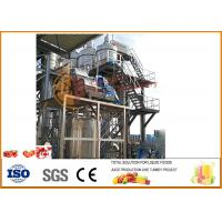 China Small Concentrated Tomato Paste Production Plant ISO9001 Certification on sale