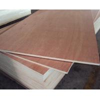 Red Hardwood Plywood/Commercial Plywood for Sale Manufactures