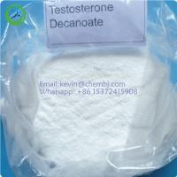 Safety Raw Hormone Powders Testosterone Decanoate 5721-91-5 For Muscle Gaining Manufactures