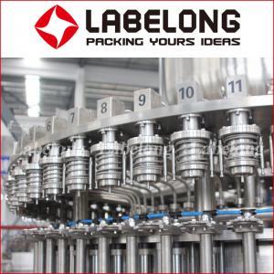 Apple / Orange / Mango Juice Bottling Plant In Filling Machines Manufactures