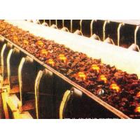 Buy cheap Custom Heat Resistant Conveyor Belt With Polyester Canvas And Rubber Cover from wholesalers