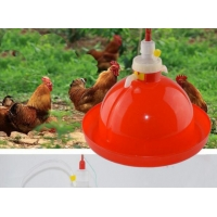 Poultry Drinking Lines System 80pcs Chicken Feeders And Drinkers Manufactures