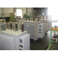 Low Loss Oil Immersed Type Transformer , S13 10kV 250 Kva 3 Phase Transformer Manufactures