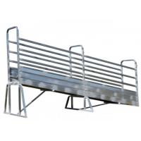 Metal Cattle Loading Ramp Double Swing Access Gates Heavy Duty Ladder Manufactures