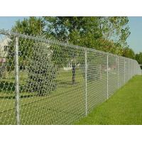 High Strength Decorative Chain Link Fence , PVC Coated Wire Mesh For Cages Manufactures