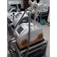 Best 2 Different Sizes Handles Cryolipolysis Slimming Machine Manufactures