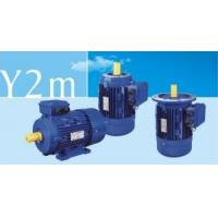 Y2m Series Three-Phase Asynchronous Induction Motors Manufactures