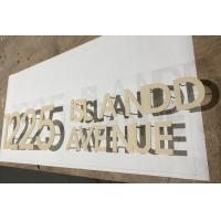 SS Acrylic Sign Letters Custom Solid Cut Out Dimensional Brushed Mirror Finish Manufactures