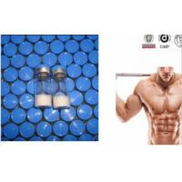 Cheap Ace-031 Peptide Peptide Steroid Hormones For Bodybuilding 1mg/Vial for sale