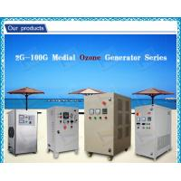 PSA 30g aquaculture ozone generator Swimming pool with oxygen source for shrimp farming Manufactures