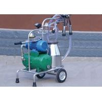 Dry Type Vacuum Pump Mobile Milking Machine With Stainless Steel Teat Cup Manufactures