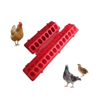Birds 28 Hole Poultry Feeder Drinker For Pigeon Manufactures