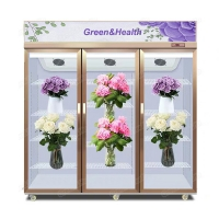 Upright Glass Door R22 Flowers Cooling Display Showcase Manufactures