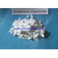 Anabolic Powder Boldenone Steroid Increase Protein Synthesis Bodybuilding Supplements Manufactures