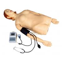 Female Half - Body Palpation Simulator with Blood Pressure Measurement for School , Hospital Manufactures