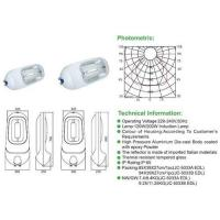Buy cheap 120w induction lamp street light from wholesalers