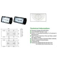 Buy cheap 200w induction lamp tunnel light from wholesalers