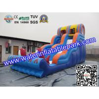 Inflatable Water Slide For Amusement Park  / Inflatable Pool Slide Manufactures
