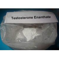 China Raw Steroids Powder Weight Loss Testosterone Enanthate Increase Muscle Mass 250mg on sale