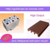 WPC wall panel extrusion mould,PVC panle,China
