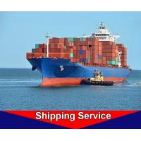 Reliable Sea Freight Forwarder , Ocean Cargo Shipping Services Shenzhen To Amsterdam Manufactures