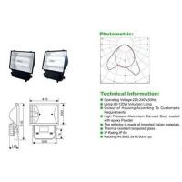 Buy cheap Electrodeless lamp floodlight from wholesalers