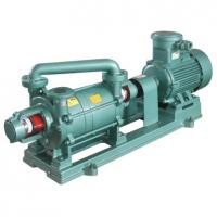China 2sk Large Cfm Double Stage Liquid Ring Vacuum Pump on sale