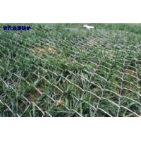 high tensile steel wire Chain link mesh for Slope protection reinforce Manufactures