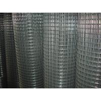 Electronic Galvanized Welding Wire Mesh 1/2 Inch , Gi Wire Mesh 0.6m -2m Width Manufactures