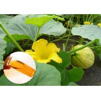 Buy cheap Food Grade Natural Plant Extract Oil Cold Pressed Pumpkin Oil Prostate from wholesalers