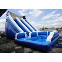 Customize Inflatable Water Slide / Kids Amusement Park 0.55 mm PVC Tarpaulin Manufactures
