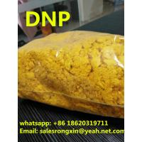 DNP Light Sensitive Weight Loss Powder 2 4- Dinitrophenol Yellow Color Manufactures